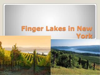 Finger Lakes in New York