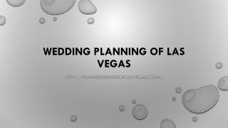 Pampered Brides of Las Vegas - Wedding Hair & Makeup