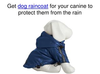 Get dog raincoats for your canine to protect them from the r