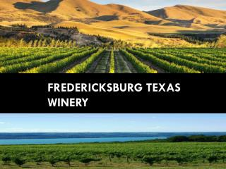 Fredericksburg Texas Winery
