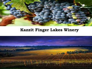 Kazzit Finger Lakes Winery