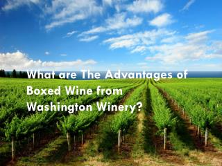 What are The Advantages of Boxed Wine from Washington Winery