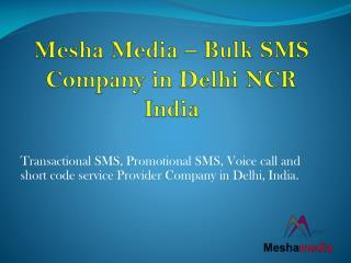 Bulk SMS Service Provider in Delhi NCR