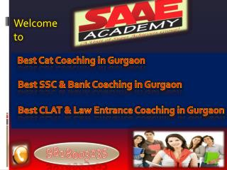 Best Cat Coaching in Gurgaon