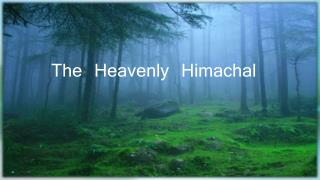 The Heavenly Himachal