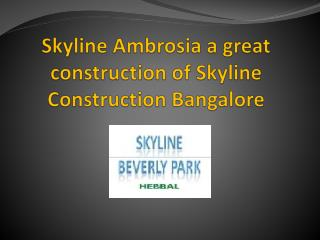 Skyline Ambrosia a great construction of Skyline Constructio