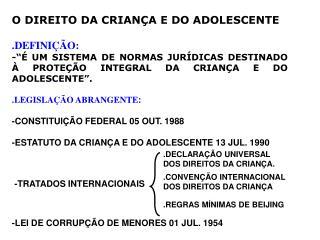 O DIREITO DA CRIAN A E DO ADOLESCENTE  .DEFINI  O: -   UM SISTEMA DE NORMAS JUR DICAS DESTINADO   PROTE  O INTEGRAL DA C