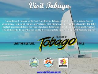 10 Reasons To Visit Tobago