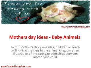 Mothers day ideas - Baby Animals