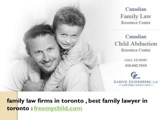 Family Law Firms In Toronto, Best Family Lawyer in Toronto: