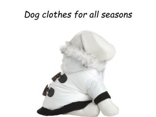 Dog clothes for all seasons