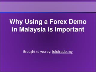 Why Using a Forex Demo in Malaysia is Important