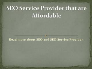 SEO Service Provider that are Affordable