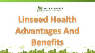 Linseed Health Advantages And Exporter