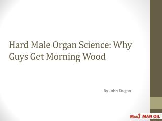 Hard Male Organ Science: Why Guys Get Morning Wood