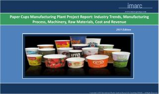 Paper Cups Manufacturing Plant | Market Trends, Cost