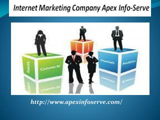 Ethical SEO Company USA - Apex Info-Serve