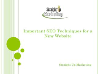 Important SEO Techniques for a New Website