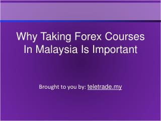 Why Taking Forex Courses In Malaysia Is Important