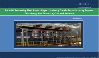 Palm Oil Processing Plant | Market Trends, Cost
