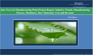 Aloe Vera Gel Manufacturing Plant | Market Trends, Cost