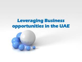Take Maximum Advantage of UAE Busines