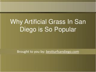 Why Artificial Grass In San Diego is So Popular