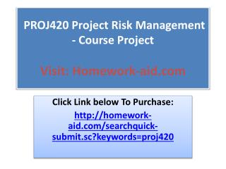 PROJ420 Project Risk Management - Course Project