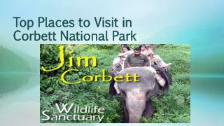 Top Places to Visit in Corbett National Park