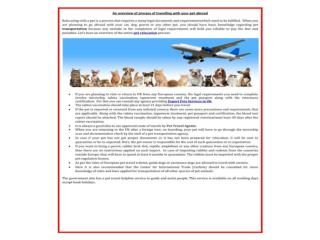 Pets Travel and Exporting Services UK with top Pet relocatio