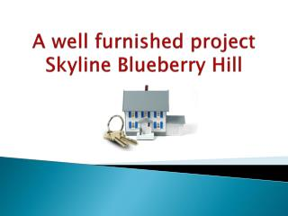A well furnished project Skyline Blueberry Hill