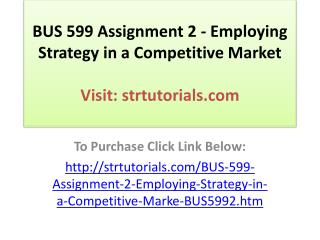 BUS 599 Assignment 2 - Employing Strategy in a Competitive M