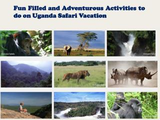 Fun Filled and Adventurous Activities to do on Uganda Safari