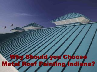 Why Should you Choose Metal Roof Painting Indiana?