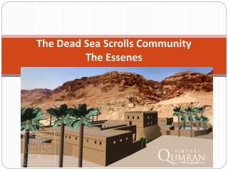 The Dead Sea Scrolls Community The Essenes