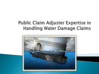 Public Claim Adjuster Expertise in Handling Water Damage