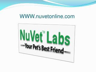 NuVet Labs Part 2 - 5 More Tips for Going Green With Your D
