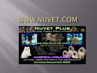 NuVet Labs: 5 Ways to Tell if Your Cat Likes You
