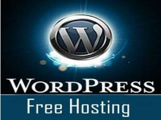 Free Wordpress hosting A budget friendly option for a beginn