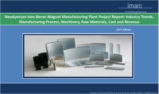 Neodymium-Iron-Boron Magnet Manufacturing Plant