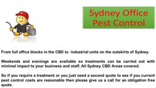 Office Pest Control Service