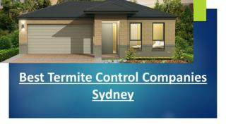 Home termite inspection blue mountains