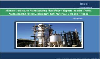 Biomass Gasification Plant | Market Trends, Cost