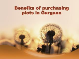 Benefits of purchasing plots in Gurgaon