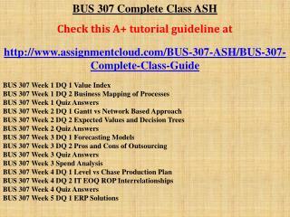 BUS 307 Complete Class ASH