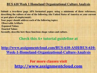 BUS 610 Week 1 Homeland Organizational Culture Analysis