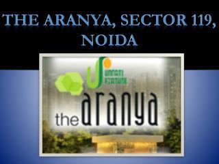 The Aranys