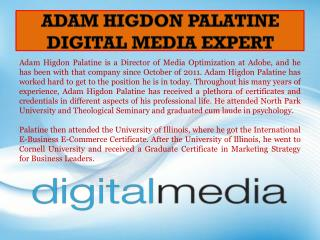 Adam Higdon Palatine - Digital Media Expert