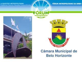 C mara Municipal de Belo Horizonte