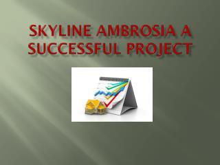 Skyline Ambrosia a successful project